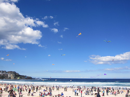 So many people, so many kites!