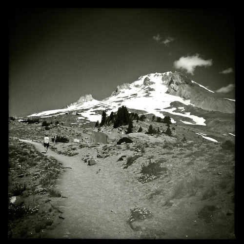 Looking up at Mt Hood