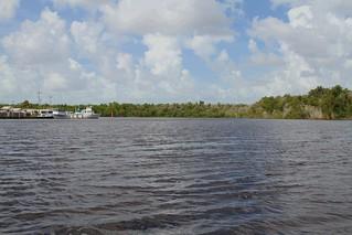 Everglades - see any alligators yet?