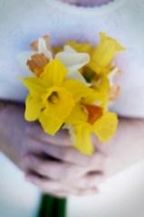 50 days of 50mm - #2/50 - Daffodils
