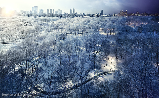 Central Park - Stephen Wilkes