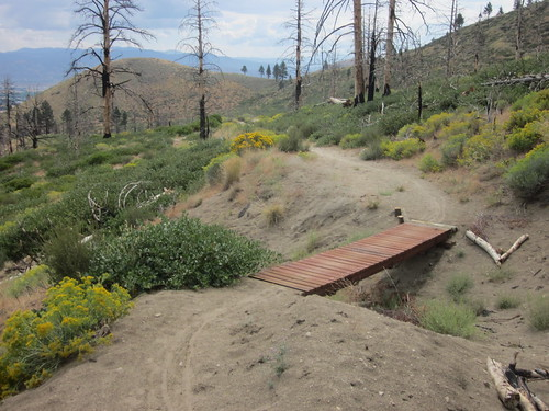 Capitol Automotive Bridge Trail