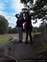 "Fountains Abbey - ""Pose Girls!"""