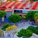 El barrio/The Borought
