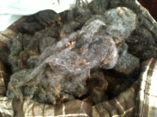 fleece inventory 001