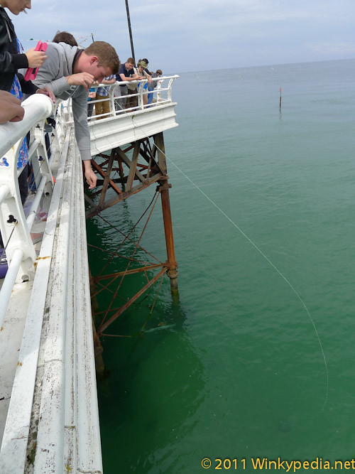 Crab fishing at Cromer Pier