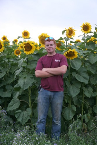 6 ft tall Callum poses by one of our sunflower fields we will cut this fall.