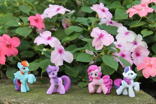 Rainbow Dash, Twilight Sparkle, Pinkie Pie and Rarity