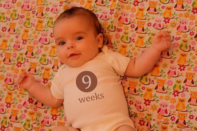 9 weeks onesie
