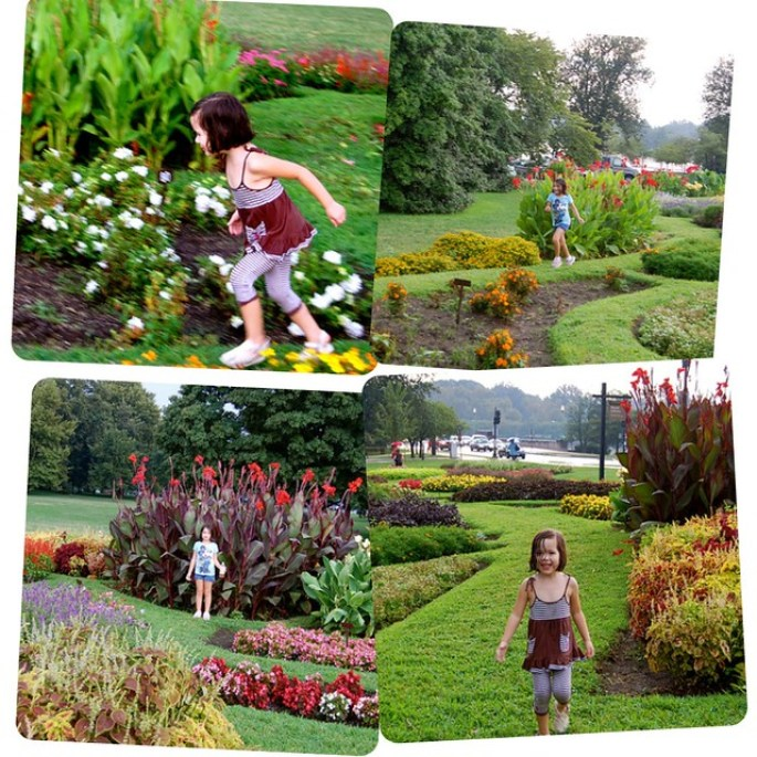 Floral Library