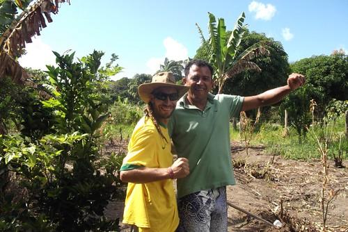 quintal da paje aldeia velha-pataxo-ervas medicinais by hacklabailux