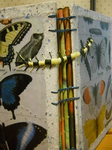 butterfly/caterpillar book
