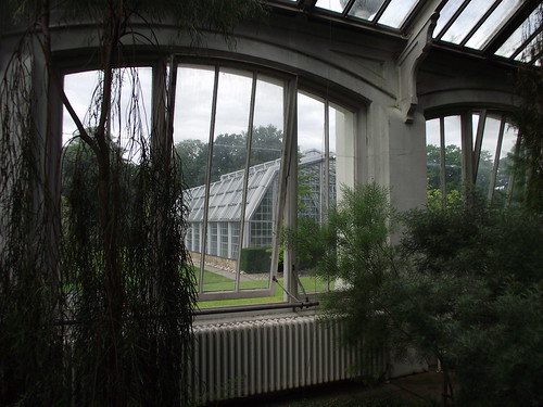 view from the temperate house