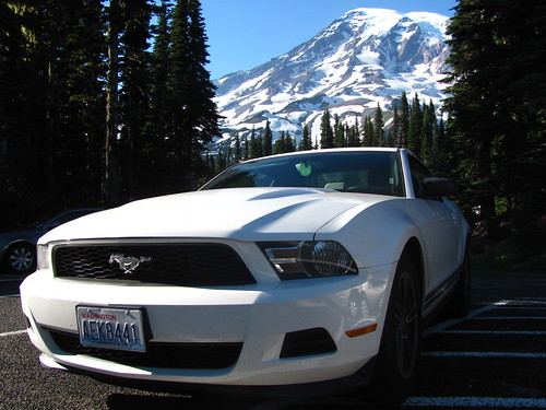 White beauties in the evergreen state by Varish