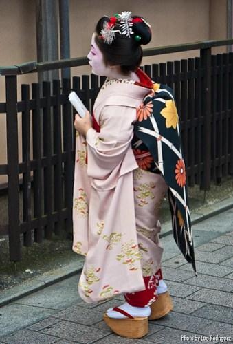Maiko con un furisode hikizuri