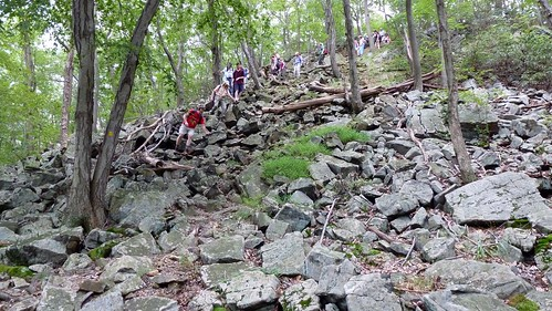 Descending a hill on the SBM