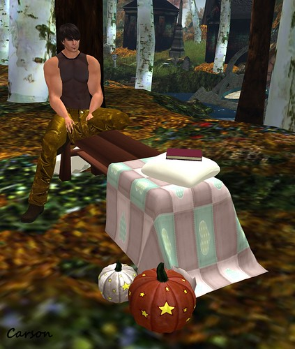 Spiders Design - Autumn Chill Bench