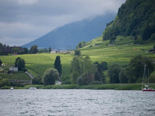 Concure Fribourg Région Morat Trois Lacs 7.jpg
