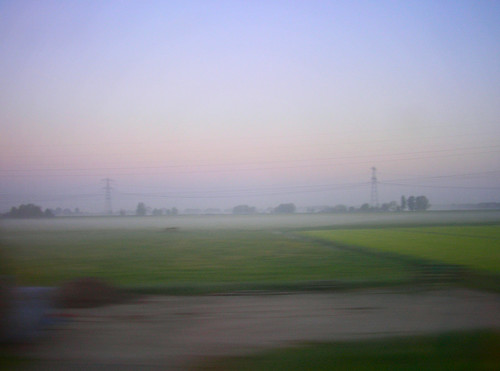 Fog and fields