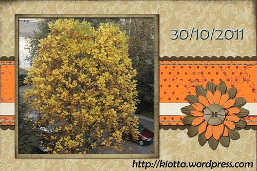 Autumn-page