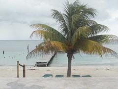 Puerto Morelos beach (2)