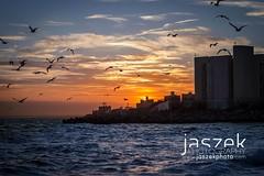Sunset over Coney Island