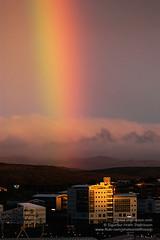Rainbow shs_005158_017d