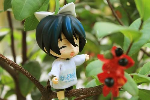 Sitting on tree (1)