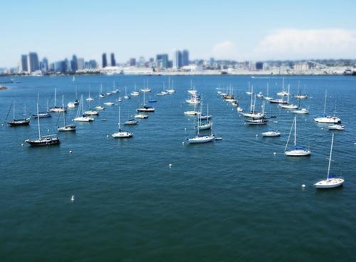 Sail San Diego by robmercier00