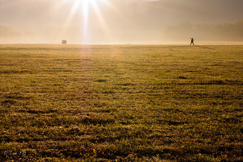 only photographers get up this early to be in a field at dawn
