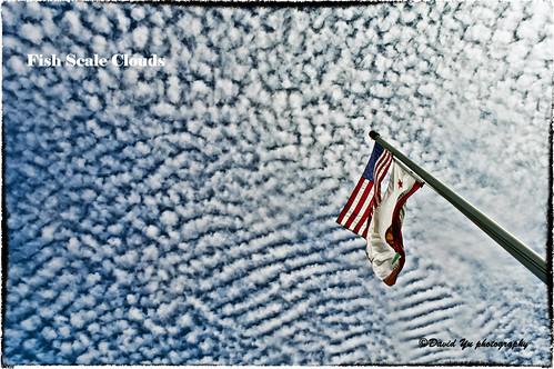 Fish Scale Clouds by davidyuweb