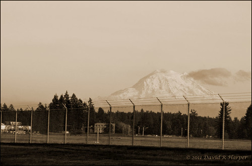 Day 298 :: 365 ..::.. The Mountain named Rainier by Echo9er