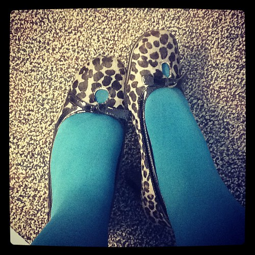Leopard and Teal