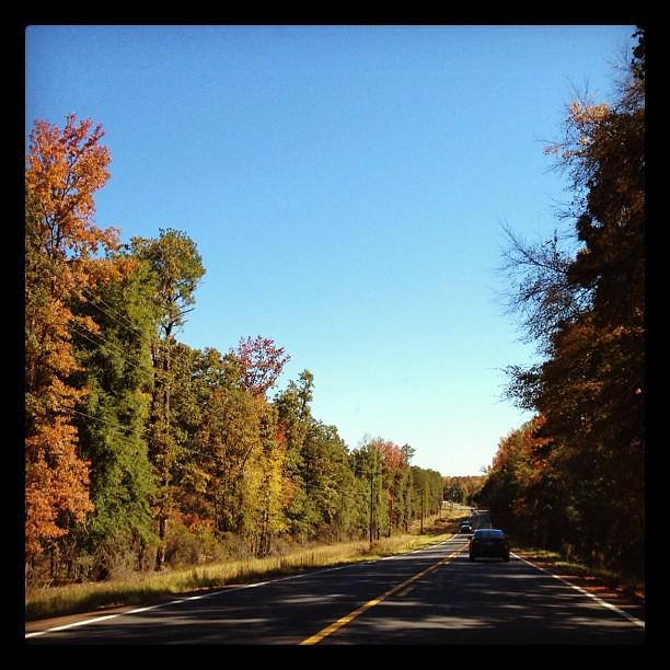 Rural Georgia Highway