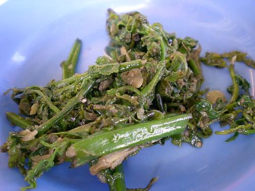 Fried paku kampung-style