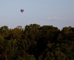 other balloon above trees