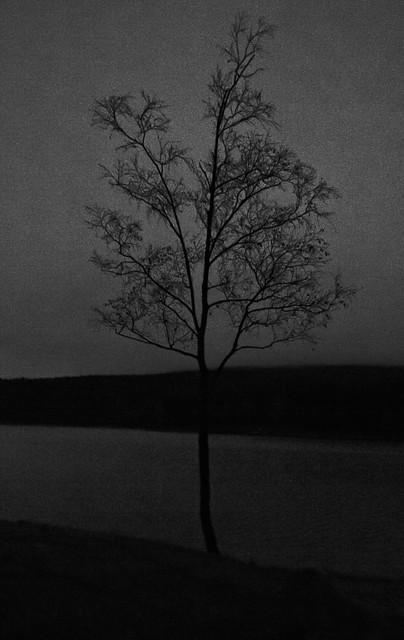 Høst, det er mørkt. (4/6)