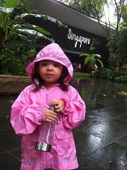 Ry Zoo 2011