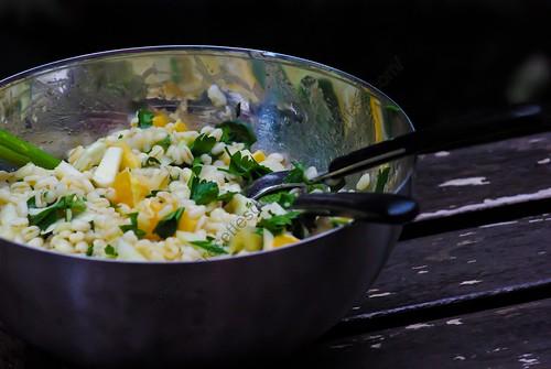 Salade vitaminée : blé, fenouil et orange / Vitaminized salad : wheat, fennel and orange