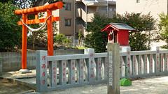熊野神社市民の森(杉山神社休憩所)(Kumano Shrine Community Woods)