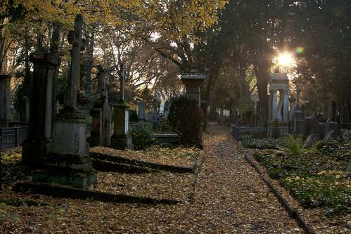Alter Friedhof Bonn