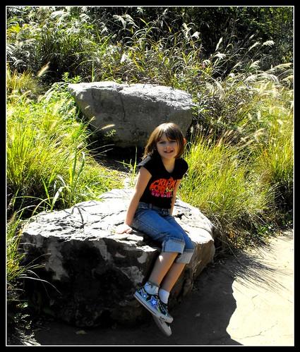 2Nashville zoo 1