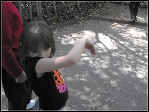 2Nashville zoo 3