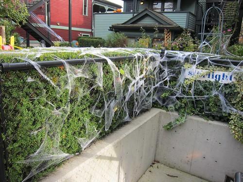 Outside Decorations Cobwebs