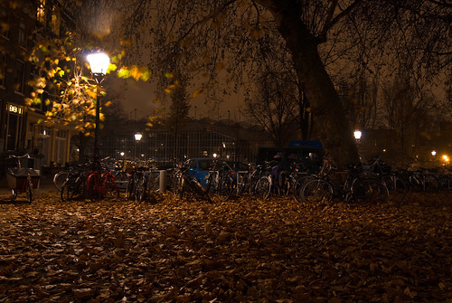 Autumn in Amsterdam (1)