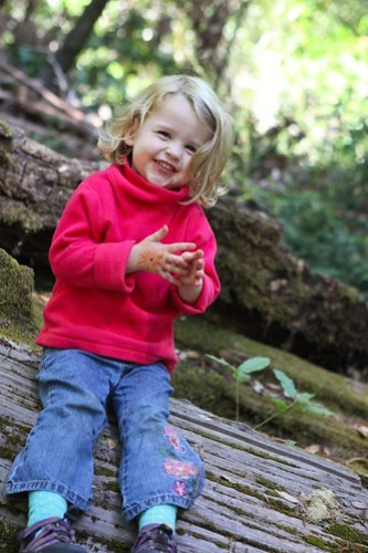 Juliet on a log in the Redwood forest