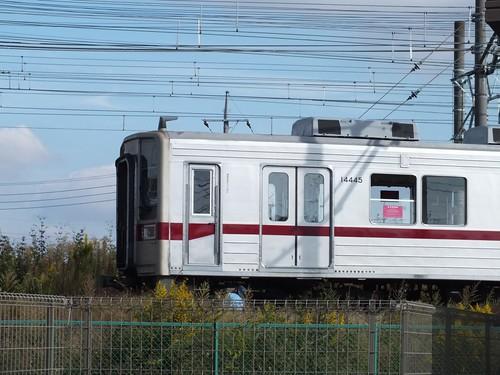 DSCF6233