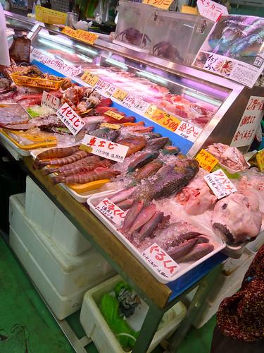 So many FRESH fish!