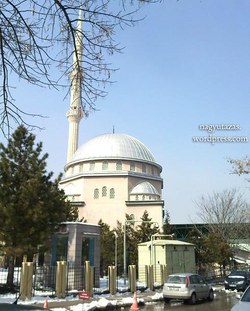 Szép, babarózsaszín mecset