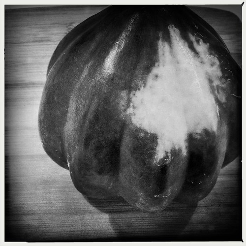 acorn squash by a_neelee